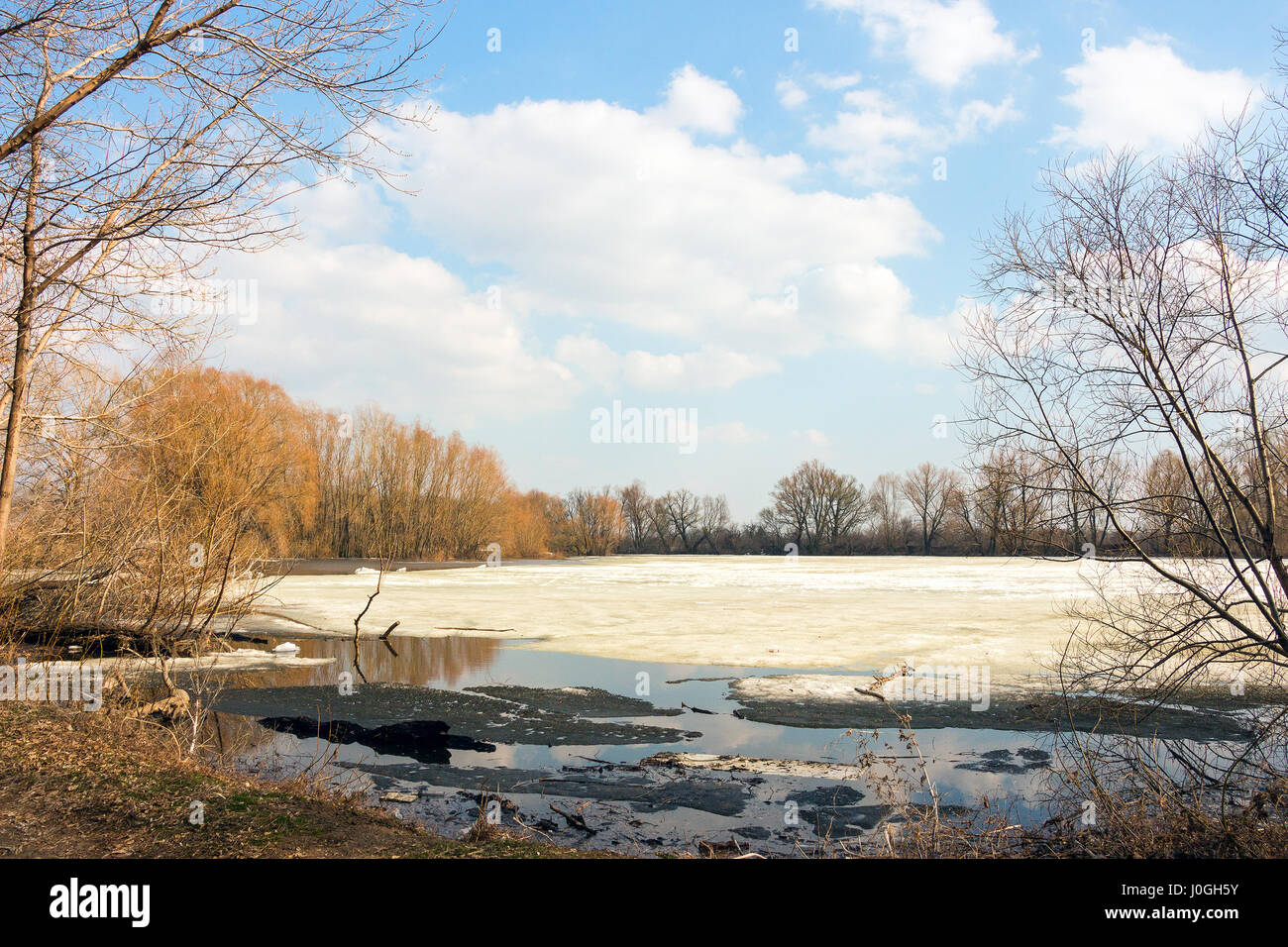 Early spring, the forest lake is freed of ice Stock Photo