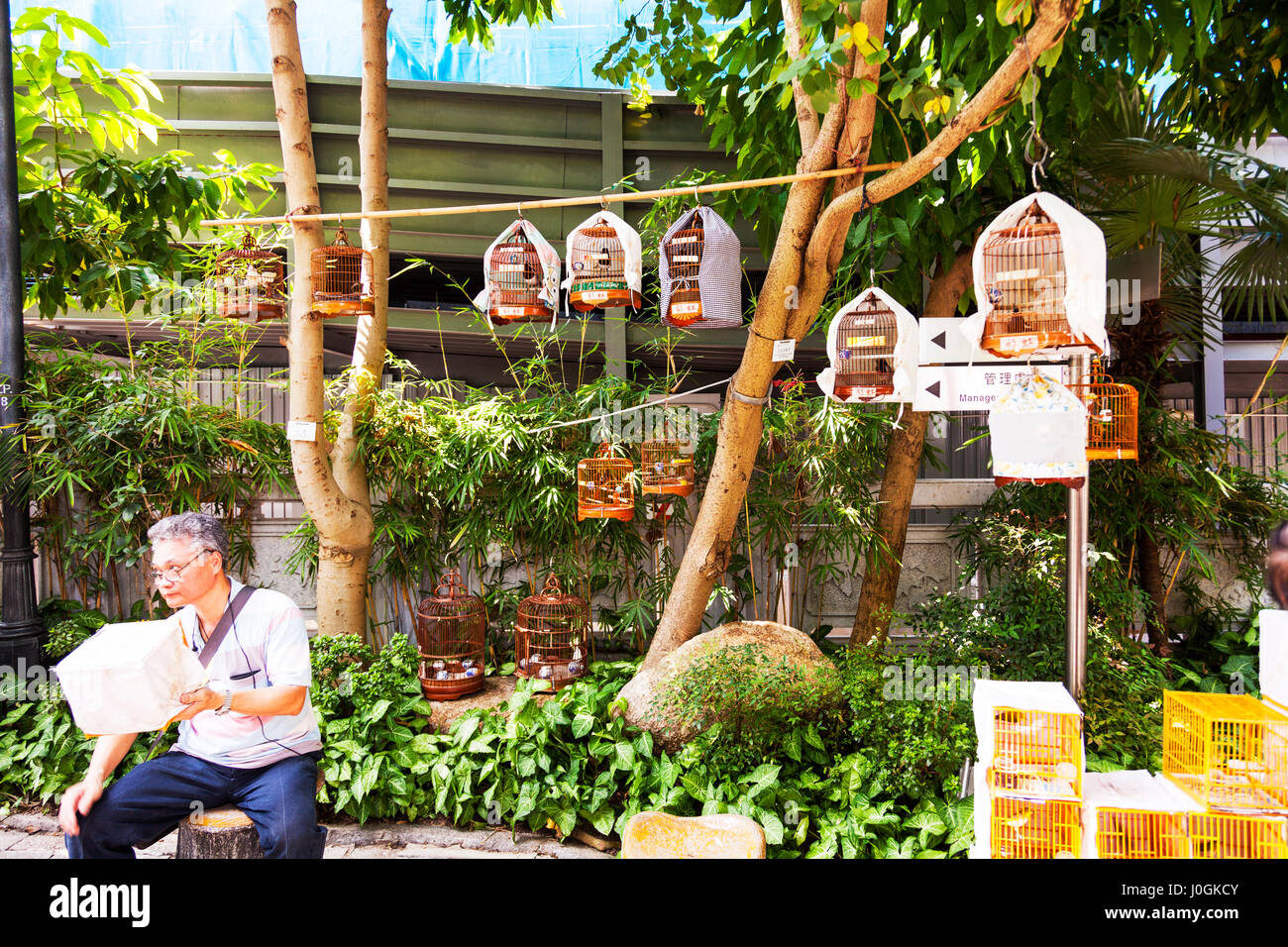 Kowloon, Hong Kong bird garden on Yuen Po Street, see the birds caged ready for sale or show birds in cages for - Stock Image
