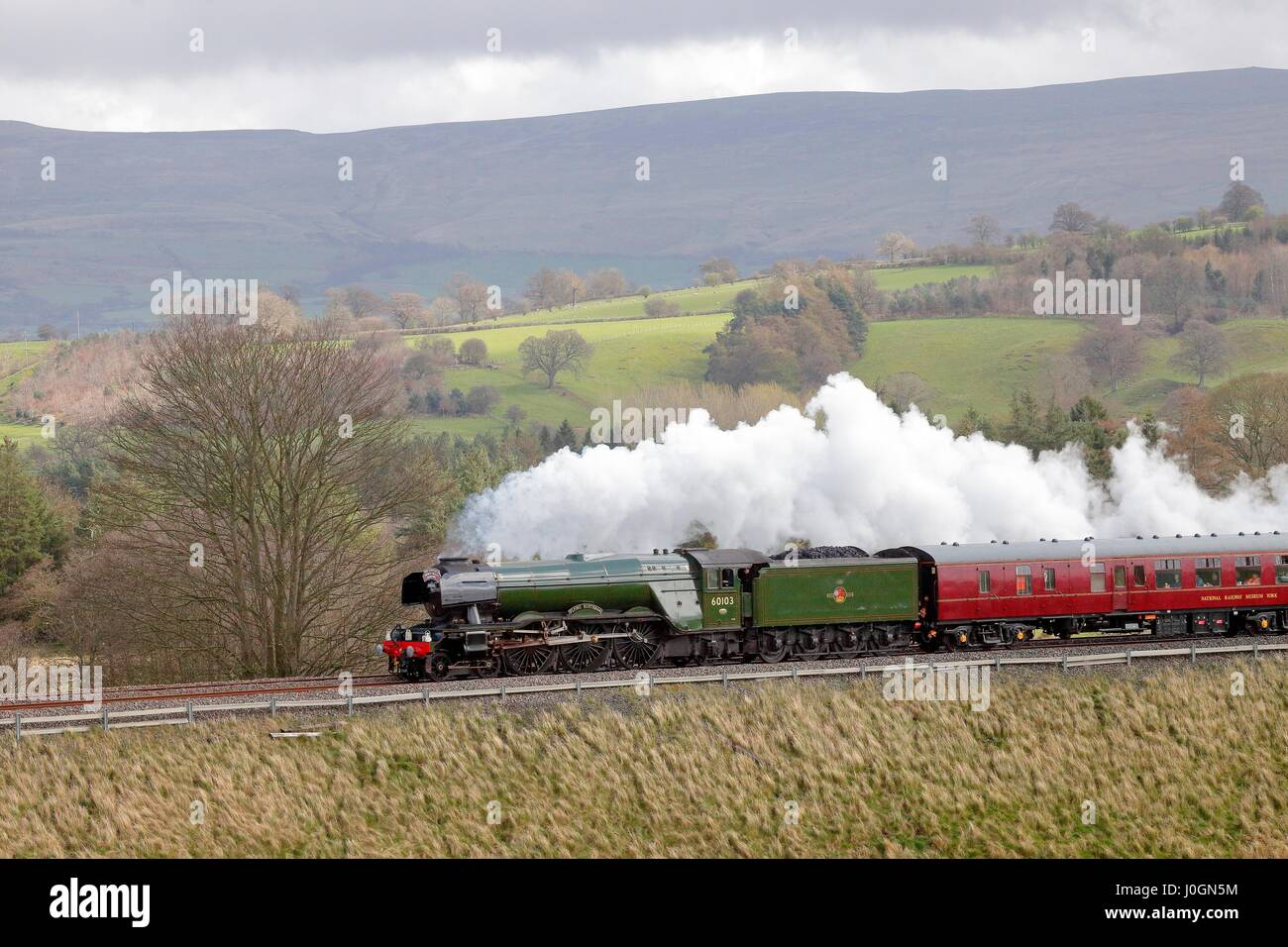 Steam train LNER A3 Class 4-6-2 no 60103 Flying Scotsman. Lazonby, Eden Valley, Cumbria, Settle to Carlisle Railway - Stock Image