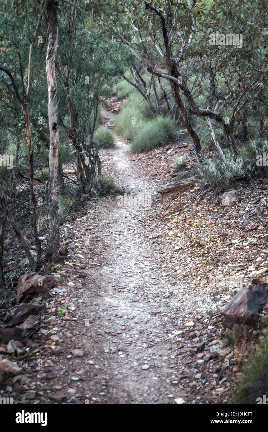 MacDonnell Ranges Redbank Gorge path Northern Territory - Stock Image