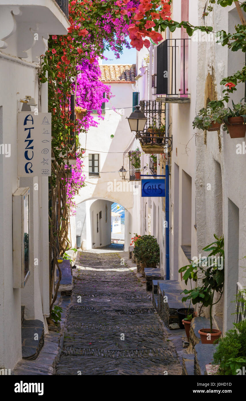 Whitewashed old town buildings along a rastell cobbled street decorated with bougainvillea, Cadaques, Catalonia, - Stock Image