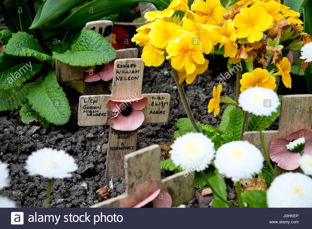 Remembering the war heroes, Lincoln, UK. - Stock Image