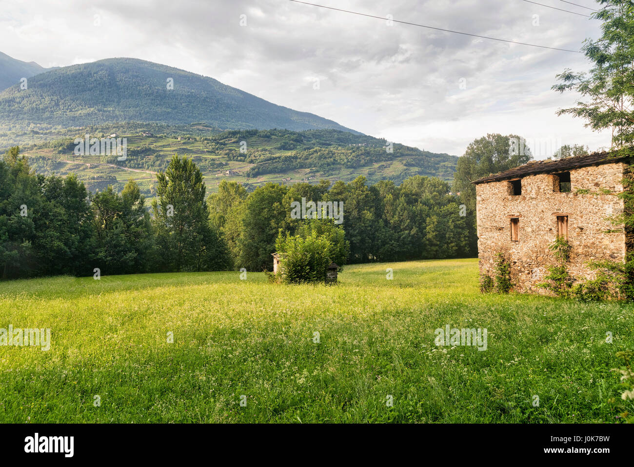 Sentiero della Valtellina, bicycle path along the Adda river iat summer Stock Photo