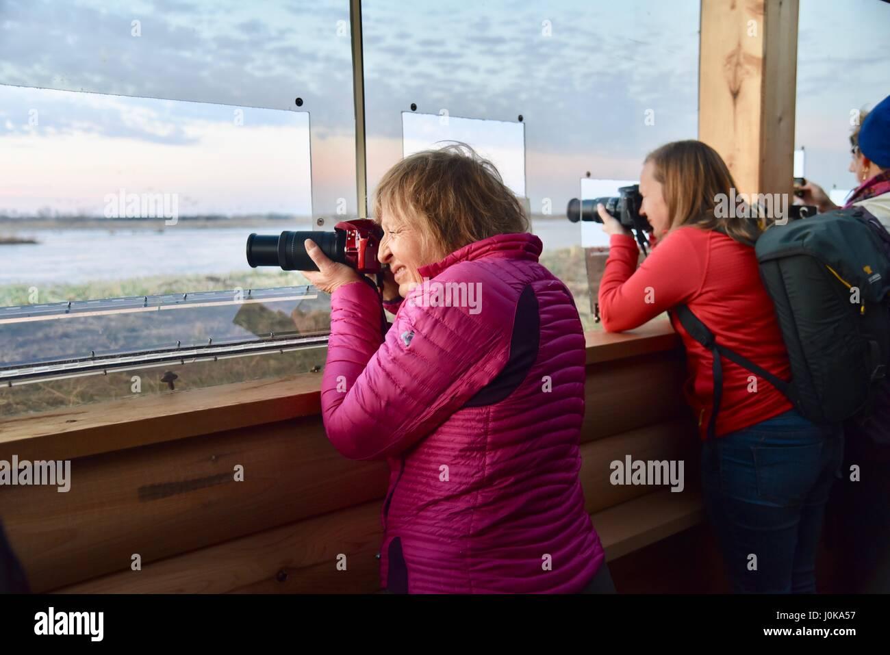 Photo Blind Stock Photos & Photo Blind Stock Images - Alamy