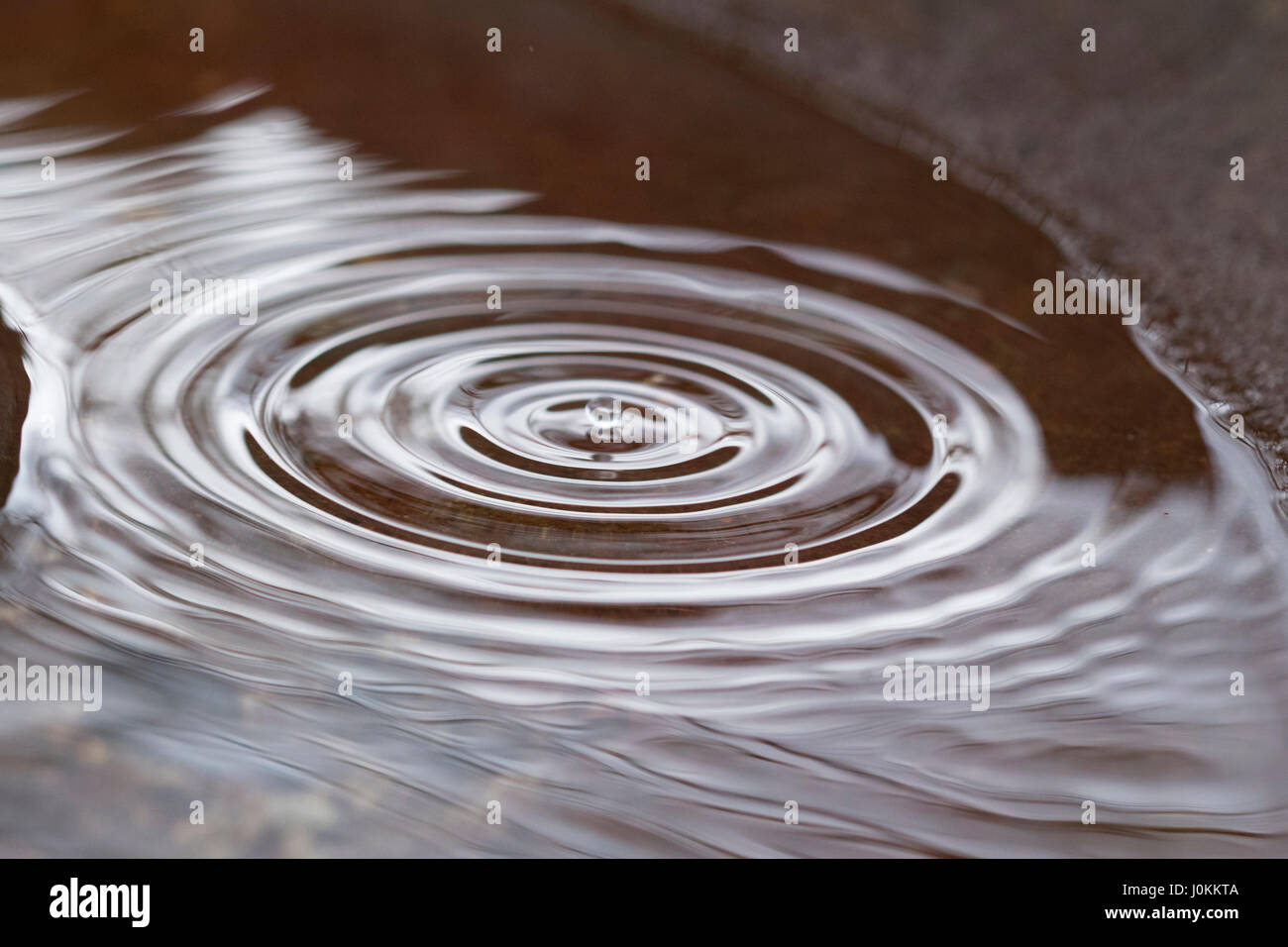 Raindrops form concentric circles - Stock Image