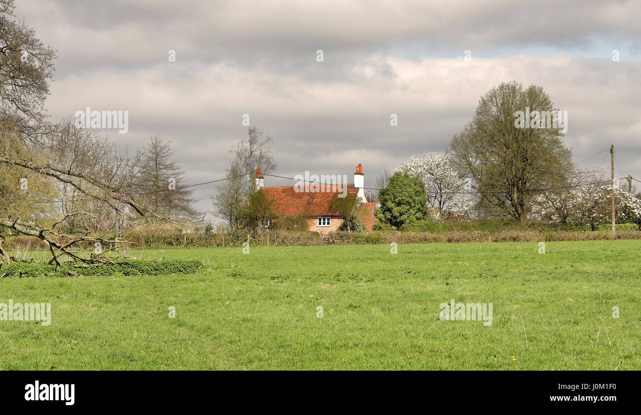 Traditional red brick English Rural Cottage with Field to the front - Stock Image