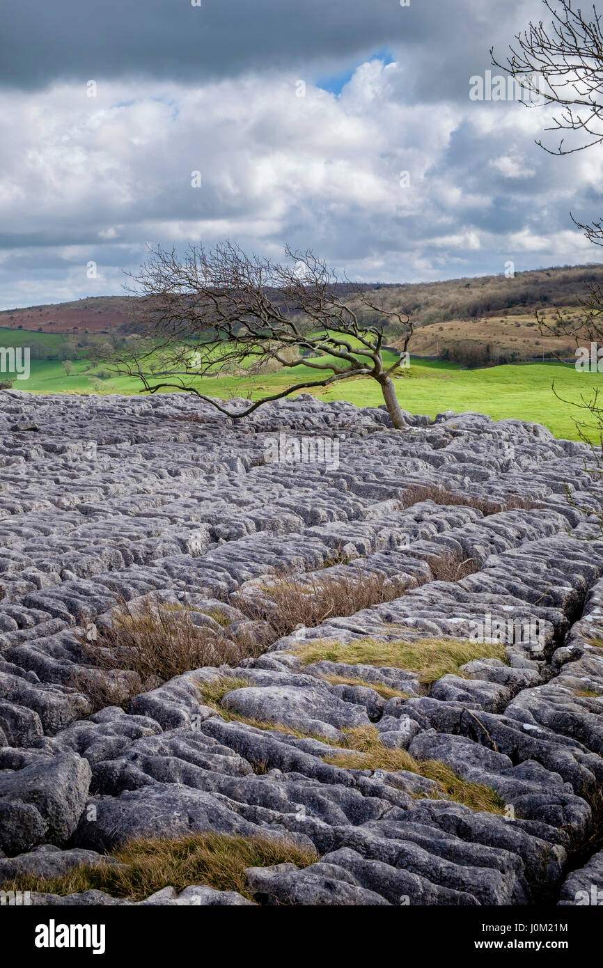 Farleton Knott, Cumbria, England - Stock Image