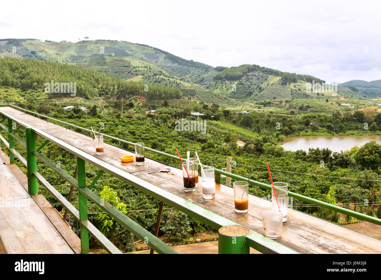Coffee 'Arabica' plantation, empty beverage glasses, overlooking from Me Linh Coffee Garden. - Stock Image