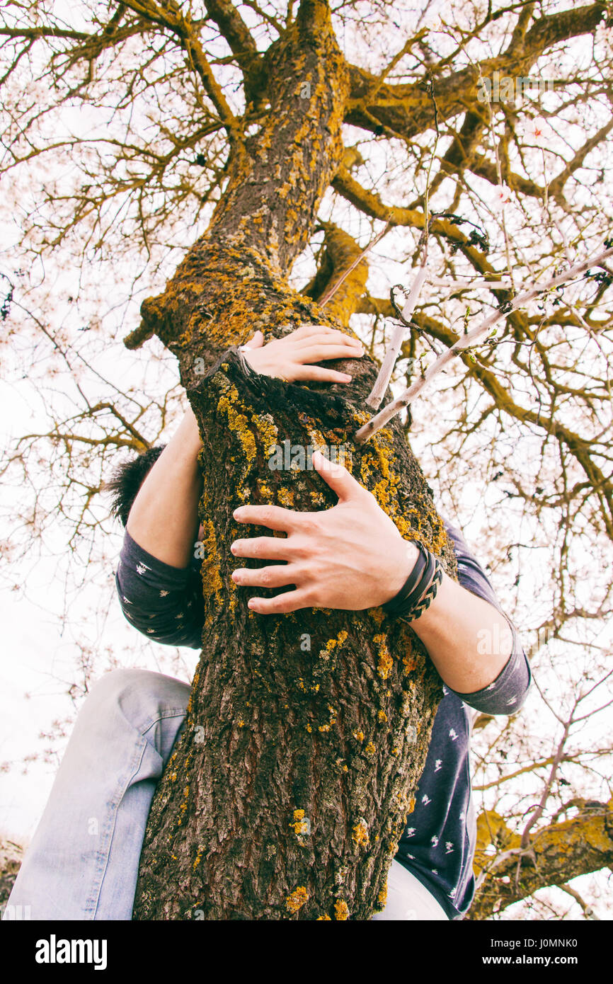 Young man hugging a tree - Stock Image