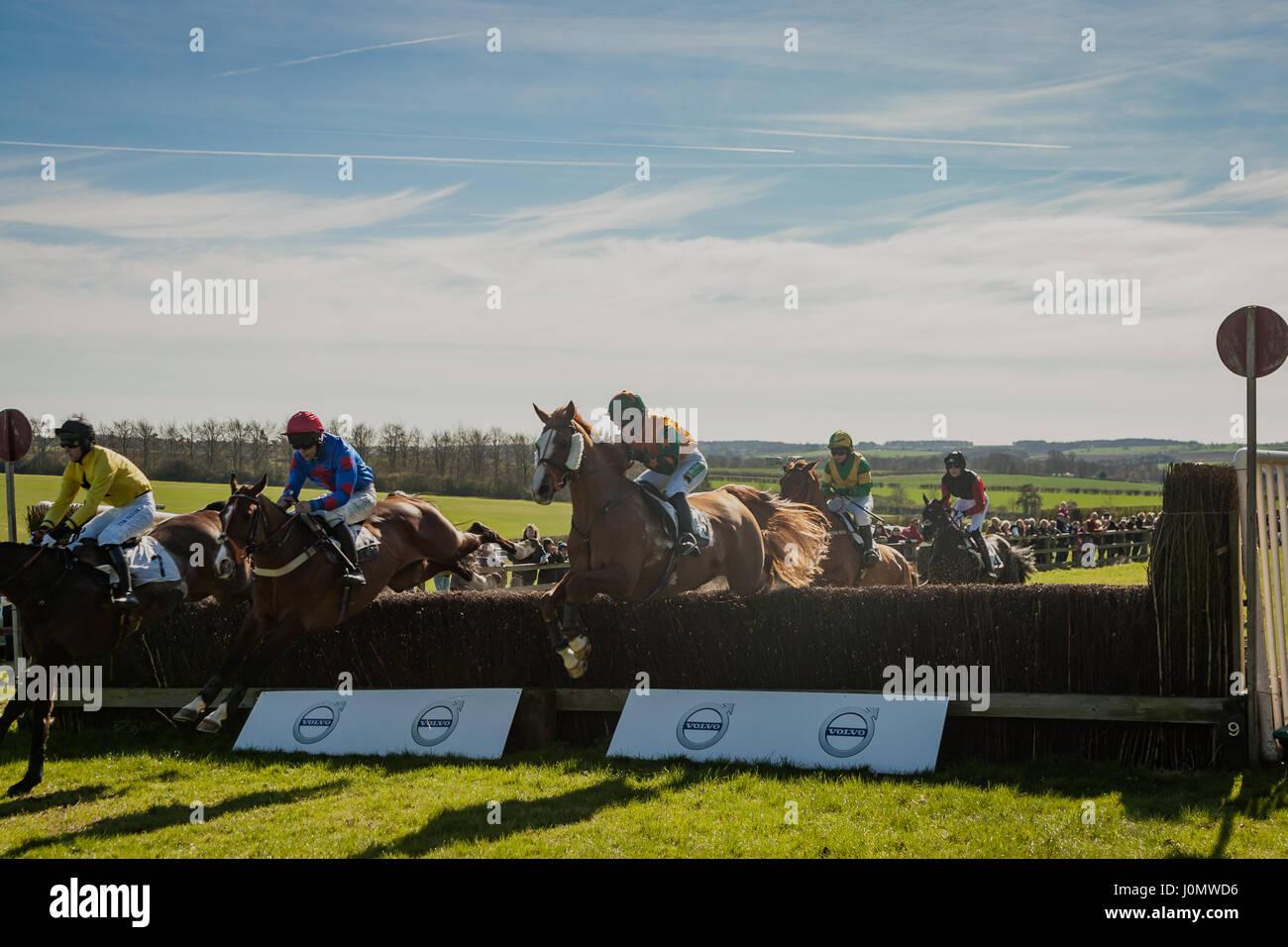 Horseheath Point to Point Stock Photo