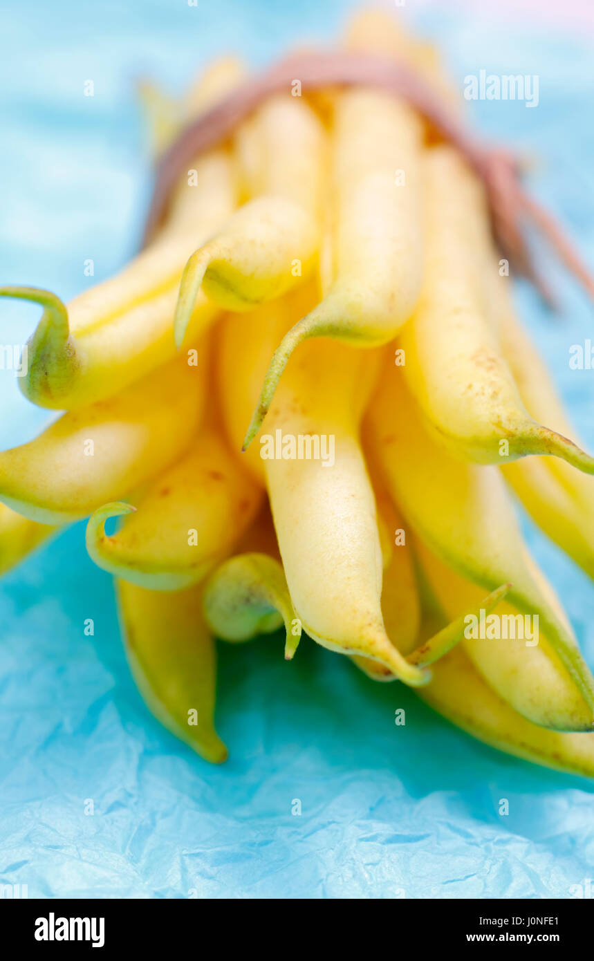 Bundle of yellow bean pods with shallow depth of field Stock Photo