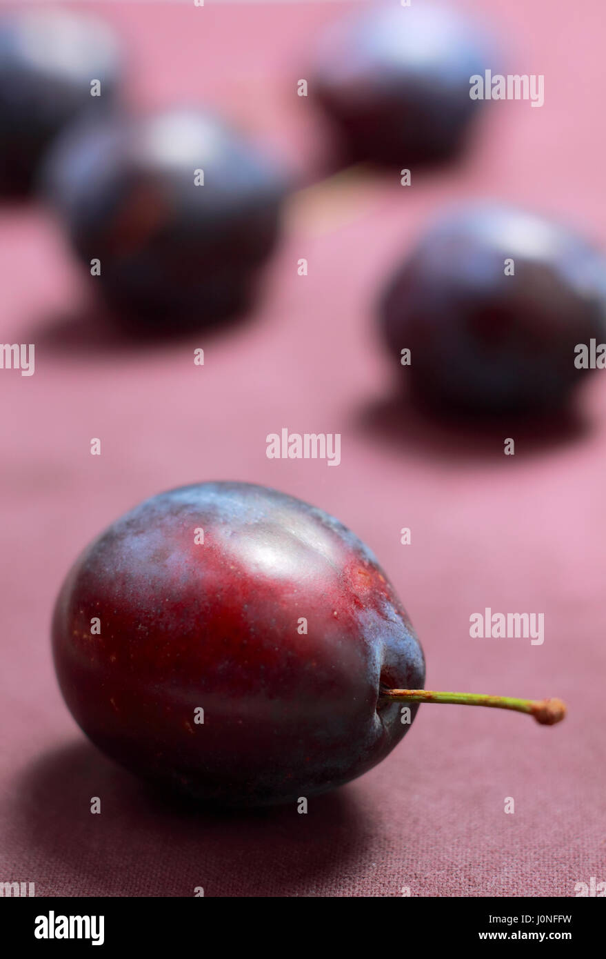 Plum on textile with unfocused plums on background - Stock Image