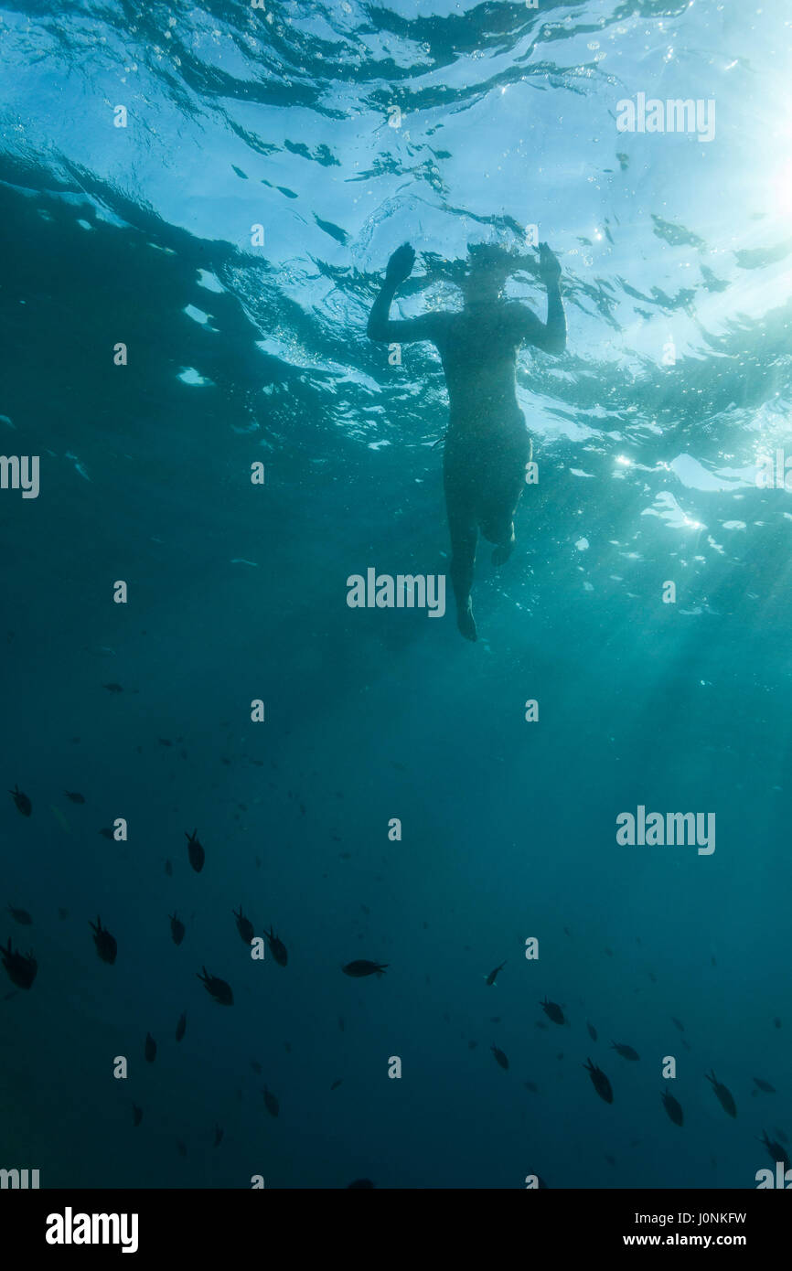 Diving on Kamenjak - Stock Image