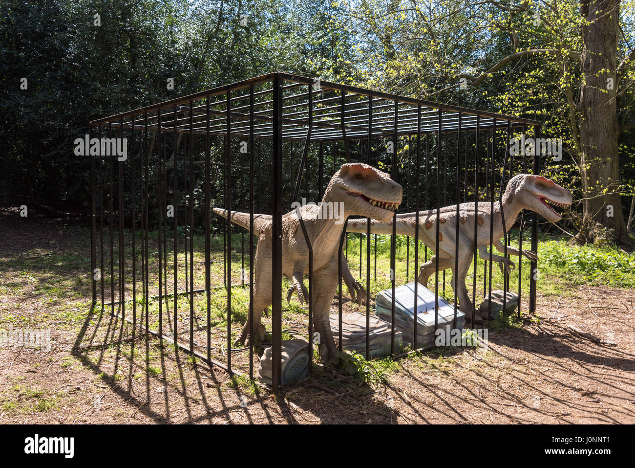 Deinonychus Raptors, Jurassic Kingdom, Osterley Park, London - Stock Image