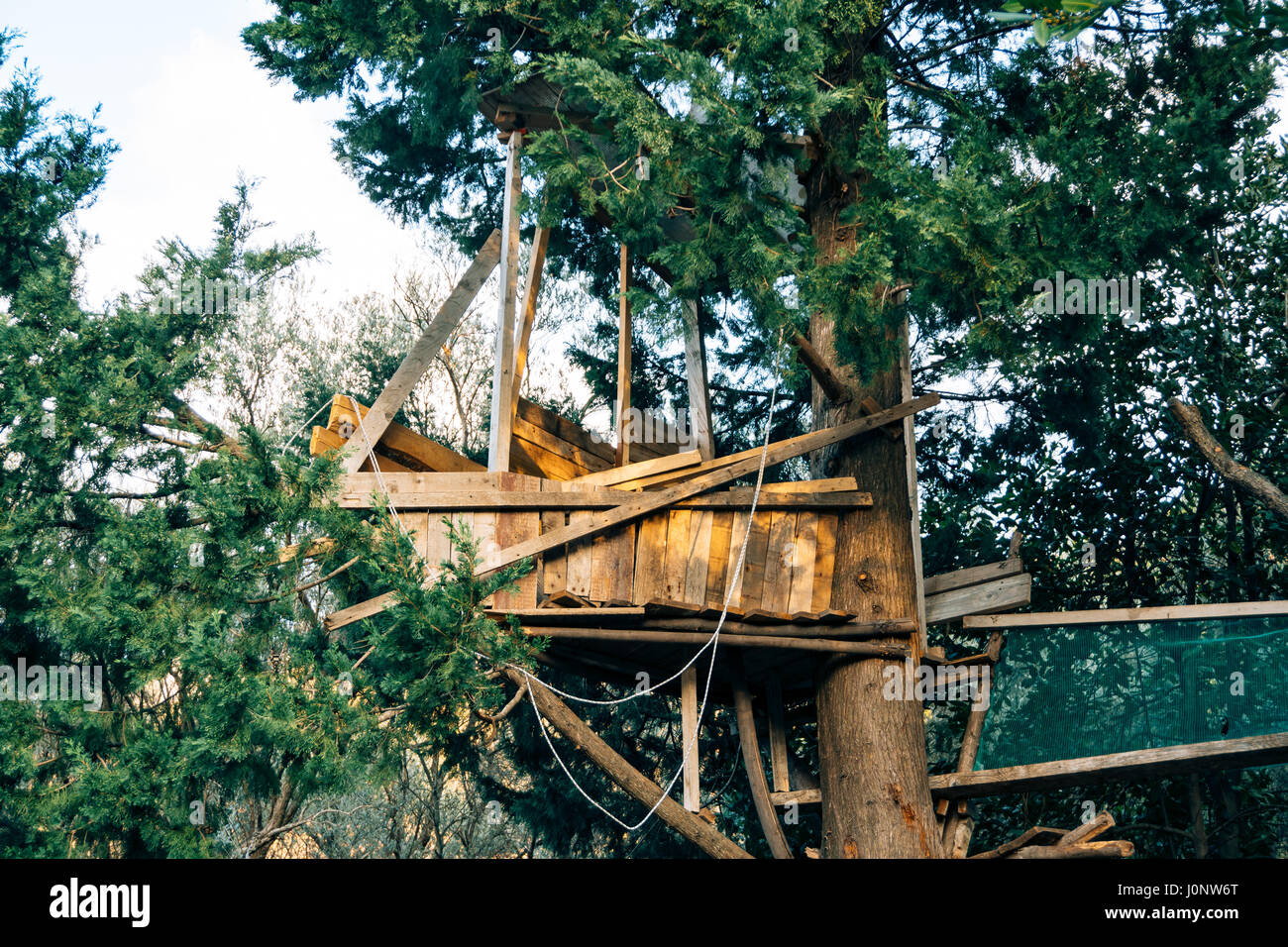 Treehouse with his own hands 77