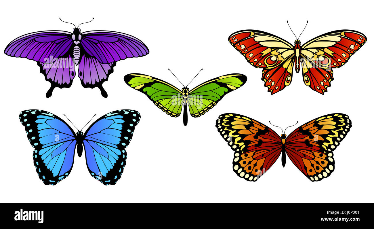 A set of colorful butterflies - Stock Image