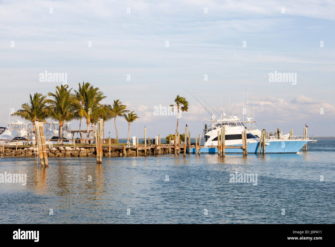 Deep sea fishing boats in a marina at the Florida Keys. Florida, United States - Stock Image
