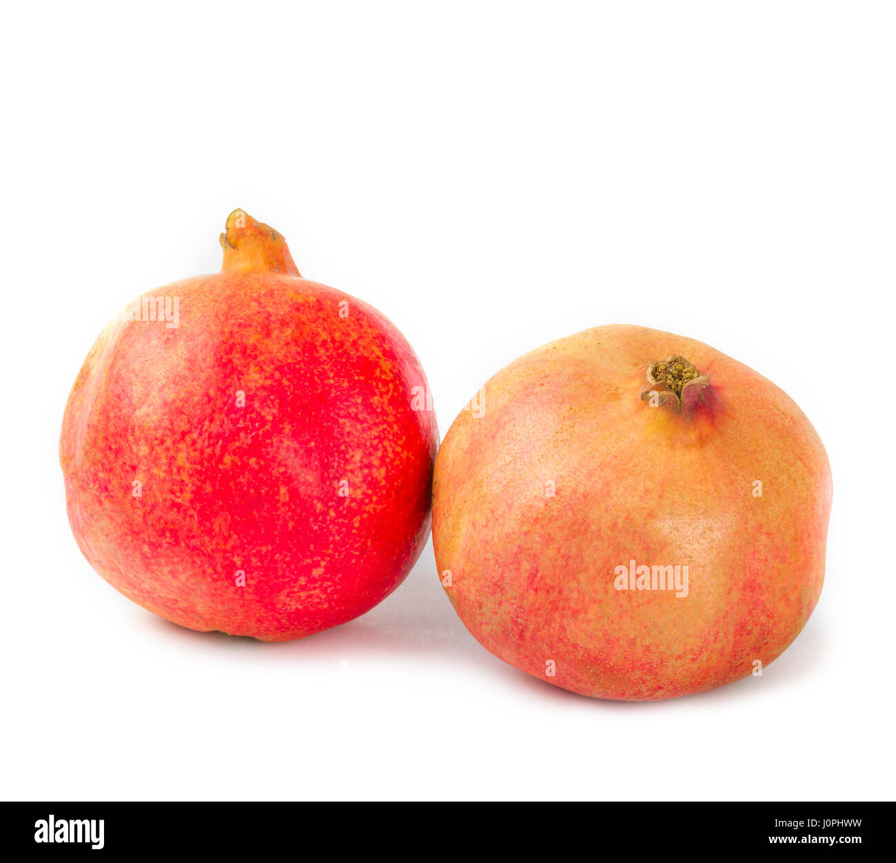 Pomegranate - Stock Image
