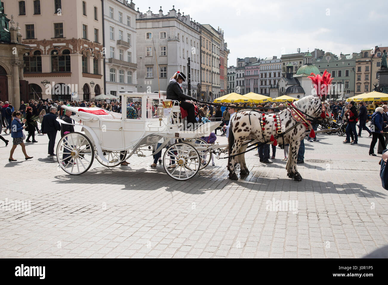 Horse and carriage tours in the main square in Krakow old town - Stock Image