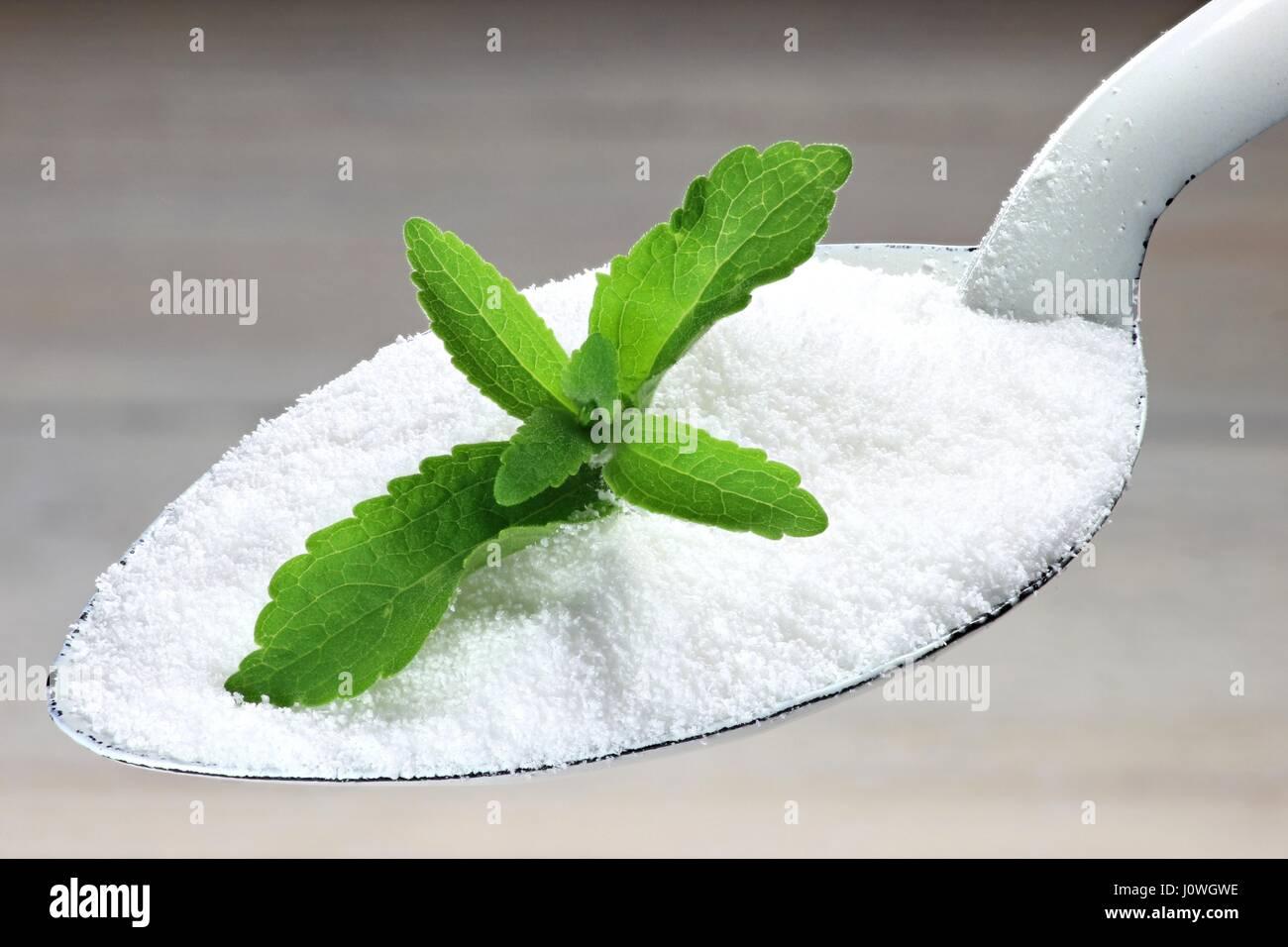 enamel spoon with alternative sweetener stevia - Stock Image