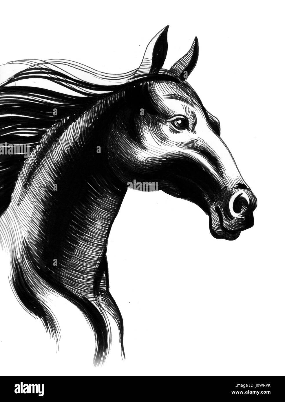 Black Horse Sketch Stock Photo Alamy