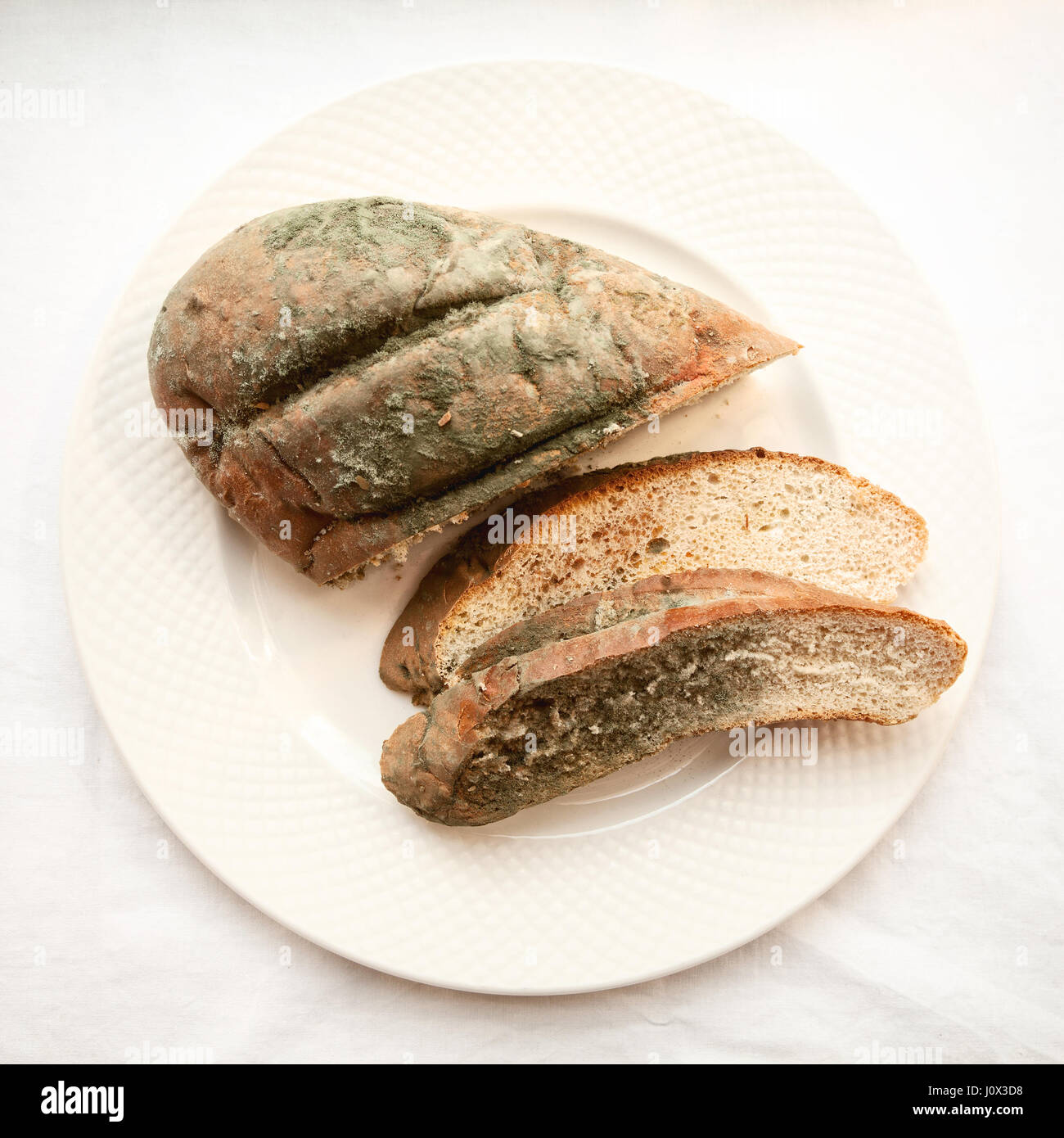 Spoiled cut loaf covered with green mold isolated. Beautiful old moldy bread sliced on a white plate. Expired bakery - Stock Image