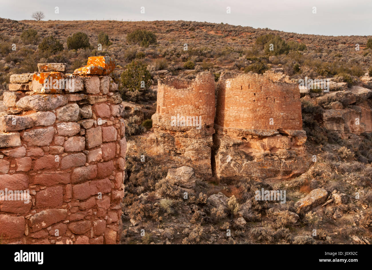 Utah;  Hovenweep National Monument; Anasazi (Ancestral-Puebloan) Houses; 'The Twin Towers.' - Stock Image