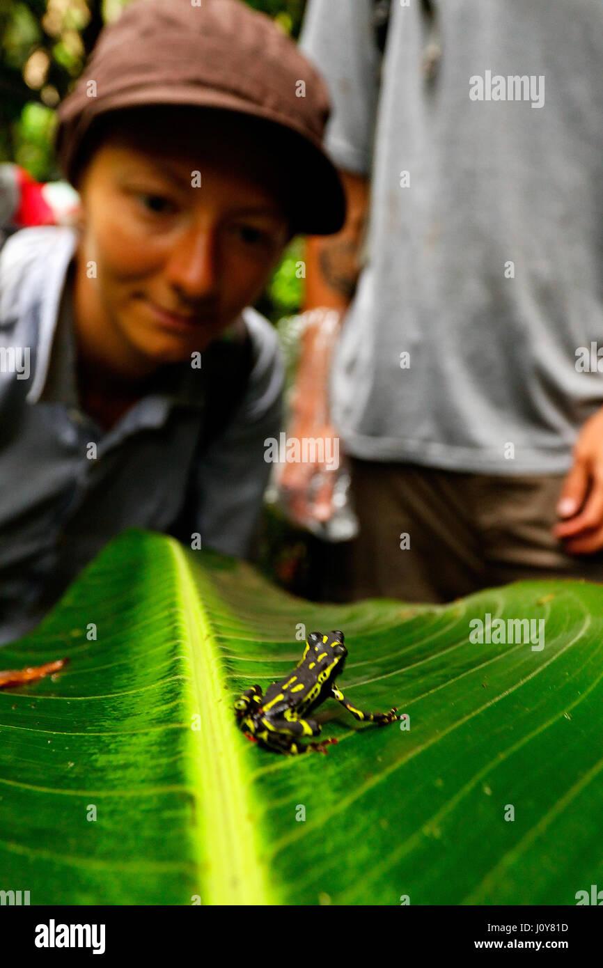 Puyo, Ecuador - Stock Image