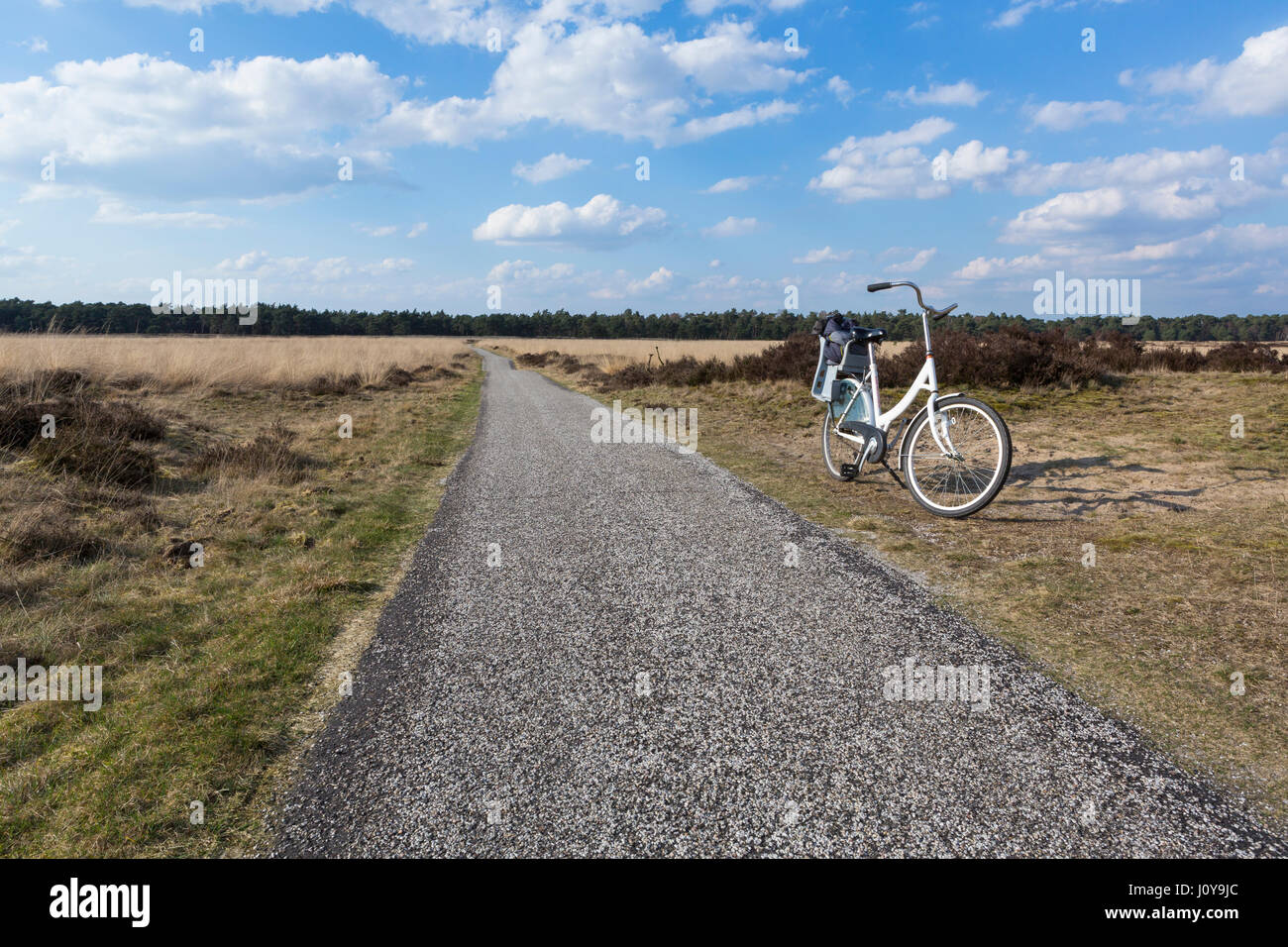 Bicycle in the Hoge Veluwe National Park, Netherlands - Stock Image