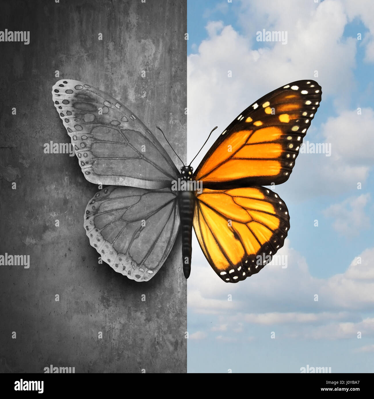 Bipolar mental disorder abstract psychological illness concept as a butterfly divided as one side in grey and sad - Stock Image