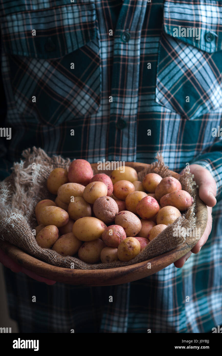 Wooden plate with raw potatoes in the hands - Stock Image