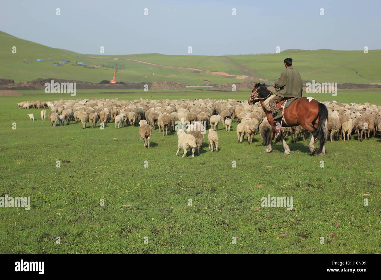 Hulunbuir China 18th Apr 2017 A Herdsman In North Chinas Inner Mongolia Autonomous Region Credit SIPA Asia ZUMA Wire Alamy Live News