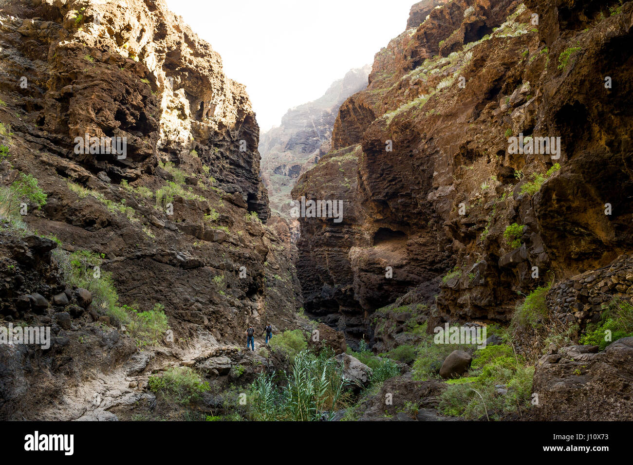 Masca trekking, Tenerife - Stock Image
