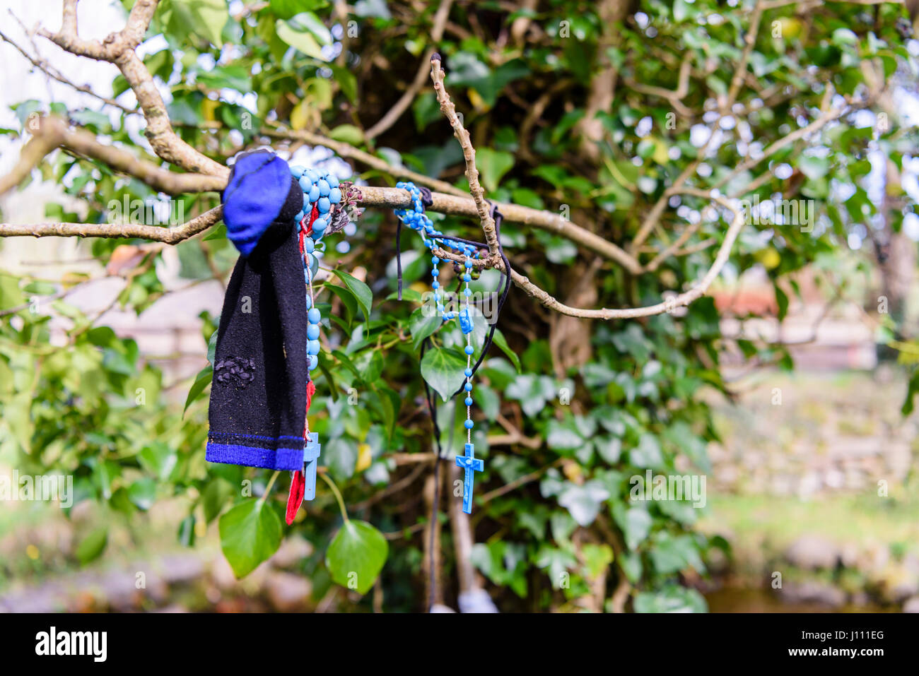 Rosary beads and a sock tied to a tree at an Irish holy well shrine. - Stock Image