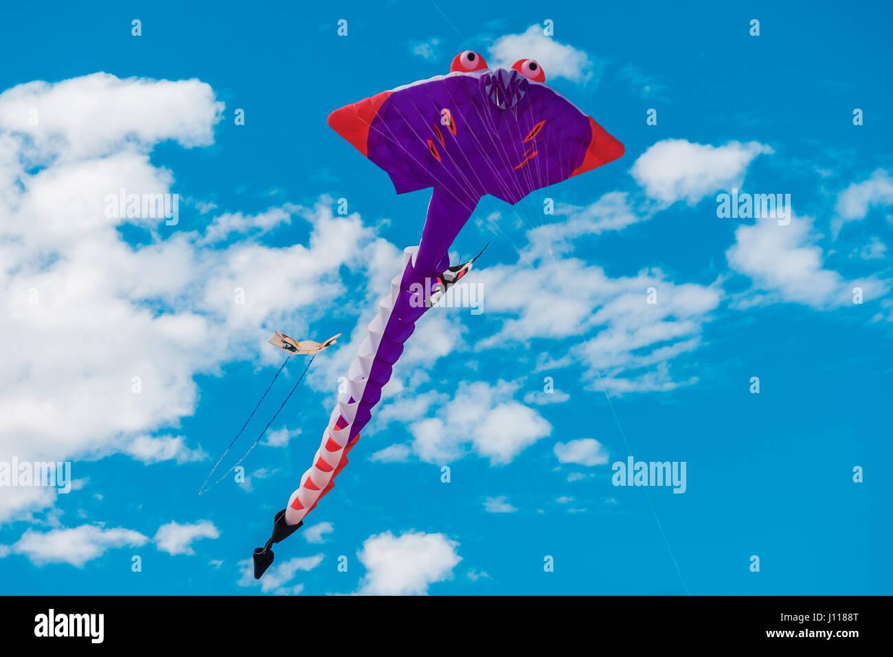 Adelaide, Australia - April 15, 2017: Adelaide International Kite Festival at Semaphore Beach. Event gathered together - Stock Image