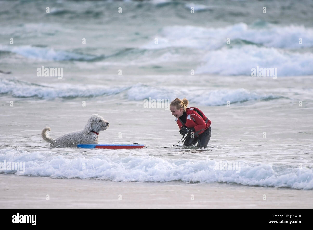 Girl Bodyboarding Laughing Sea Dog Playing Pet Portugese Water Dog Playful Companion Best friend Breed Dog friendly - Stock Image