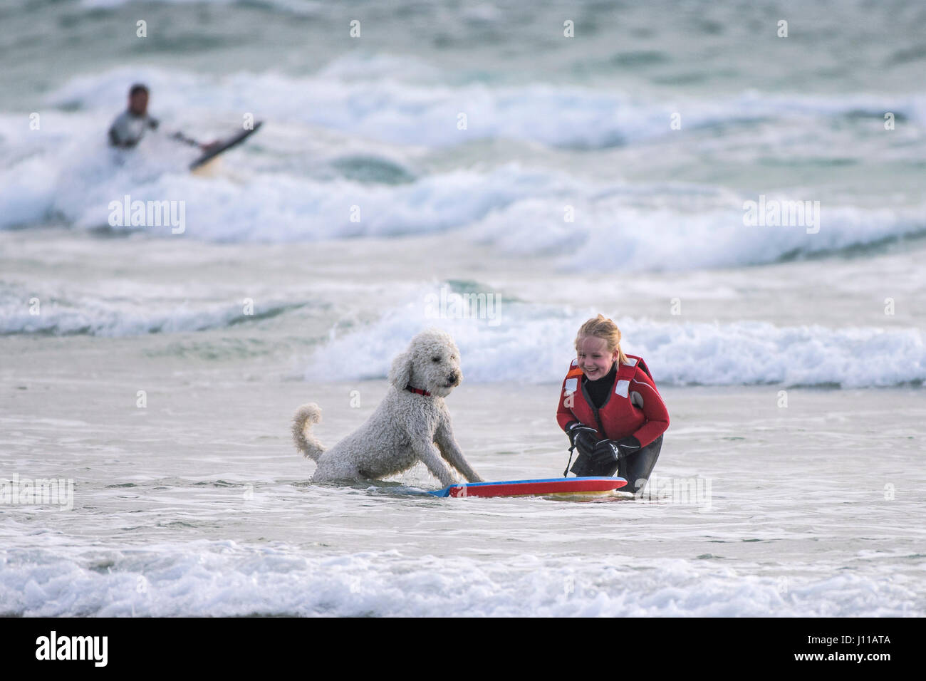 Girl Bodyboarding Laughing Sea Dog Playing Pet Portugese Water Dog Playful Companion Best friend Breed Dog friendly Stock Photo