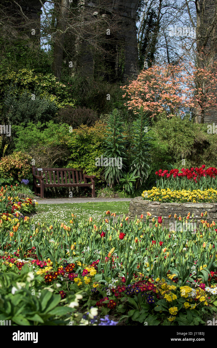Trenance Park Newquay Flowers Blooms Pretty Colourful Colorful Seat Bench Tourist attraction Parkland Landscaped - Stock Image