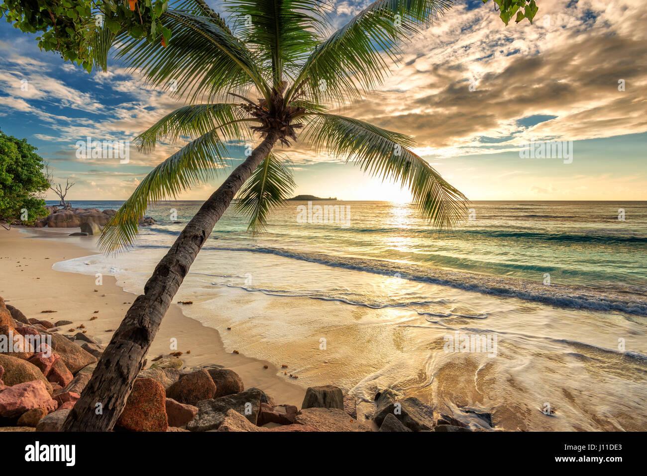 Art Beautiful Sunset at tropical beach. - Stock Image