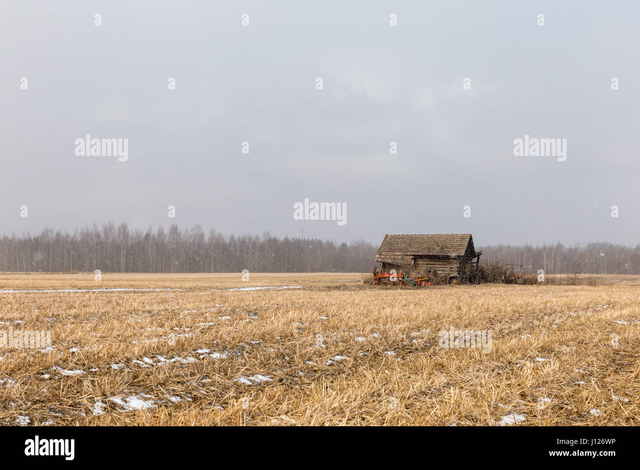 Snowing - Stock Image