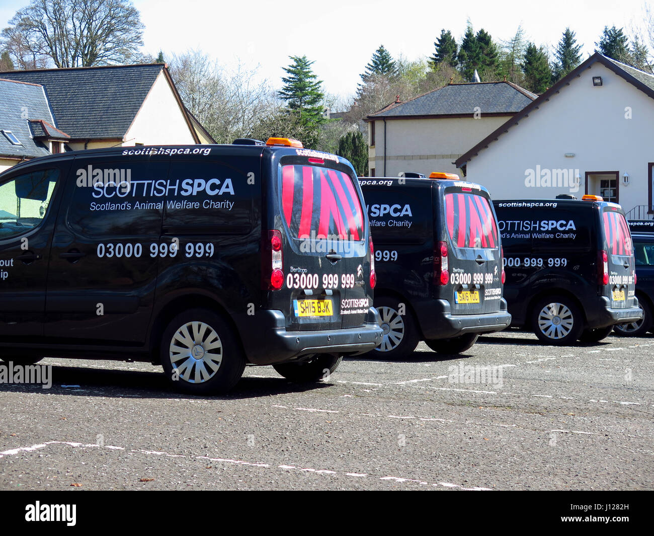 Scottish SPCA vans - Stock Image