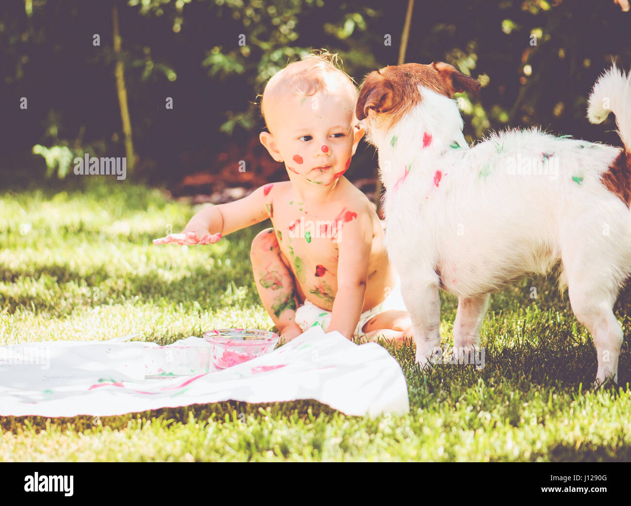 1 year old baby painting on his body and on dog - Stock Image