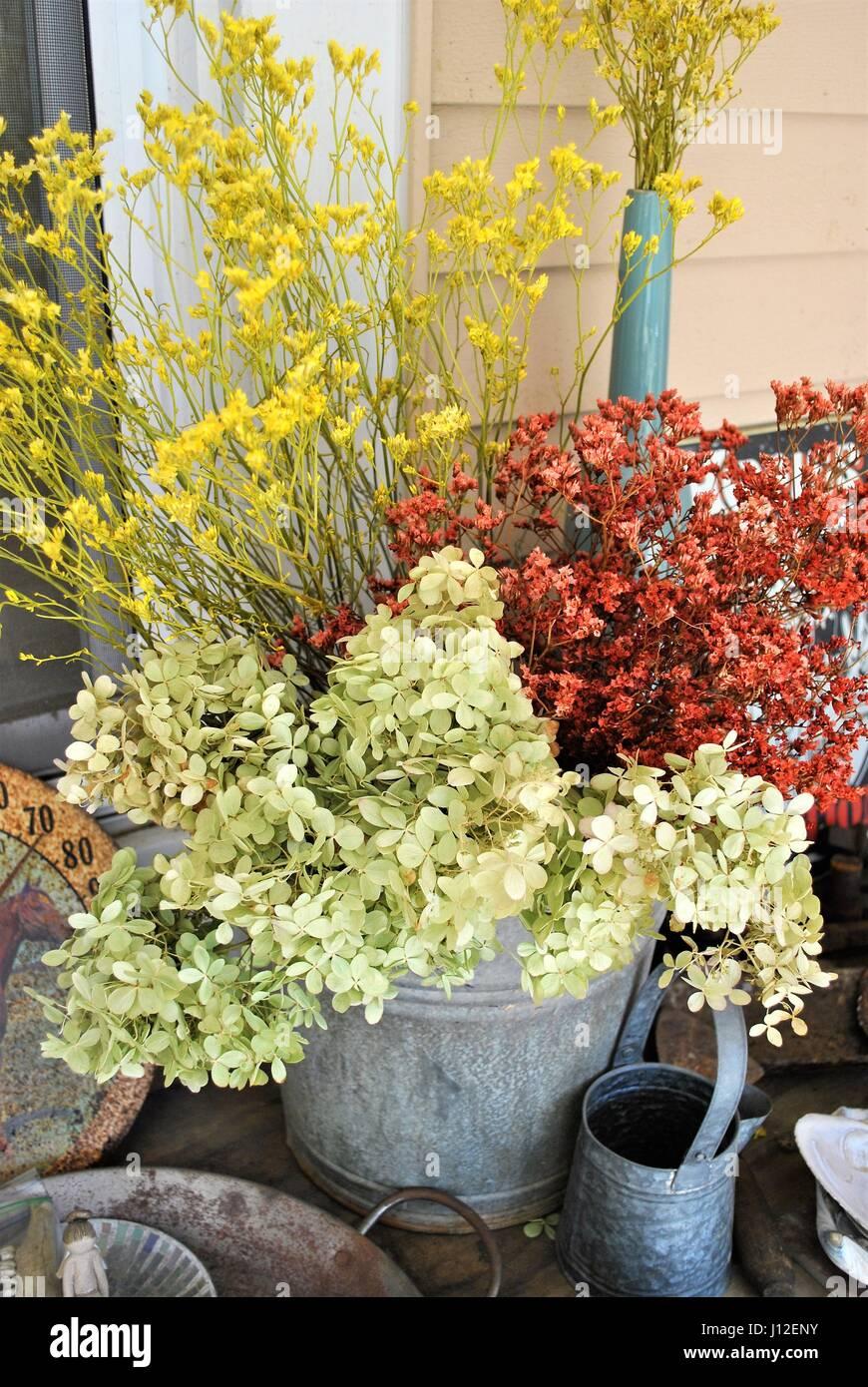Dried Flowers In Metal Bucket Stock Photo Alamy