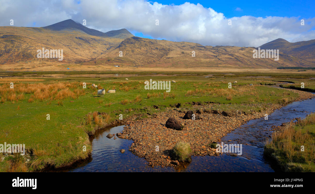 Isle of Mull Scotland UK beautiful rural countryside scene with view to Ben More mountains - Stock Image