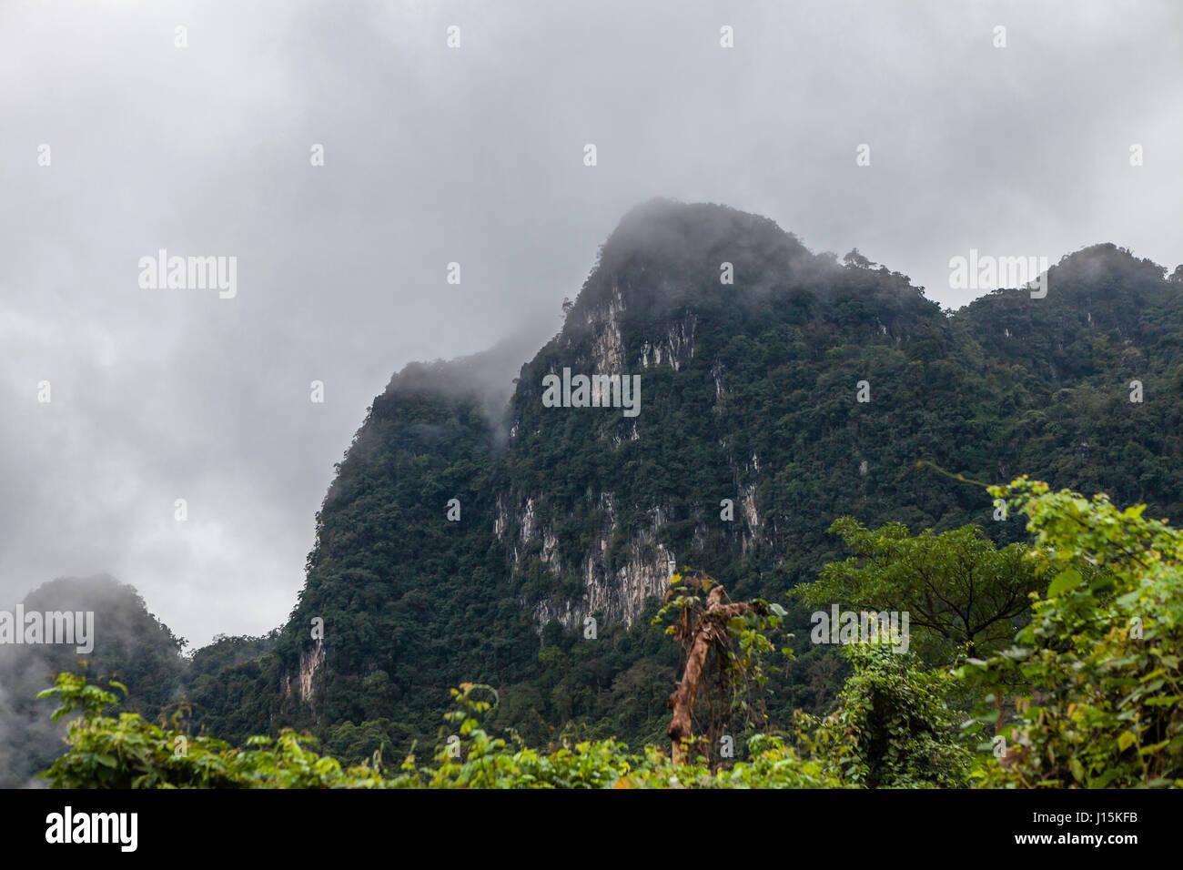 65313b6f720a Phong Nha