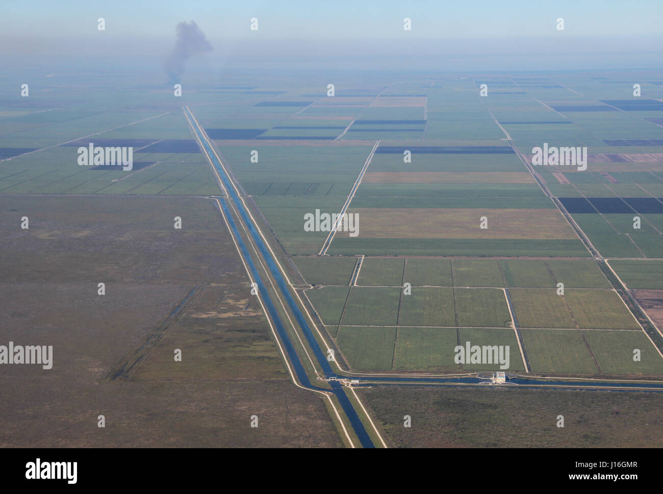 Aerial view of sugar cane fields, farmland and drainage canals in the Everglades Agricultural Area, Florida Stock Photo
