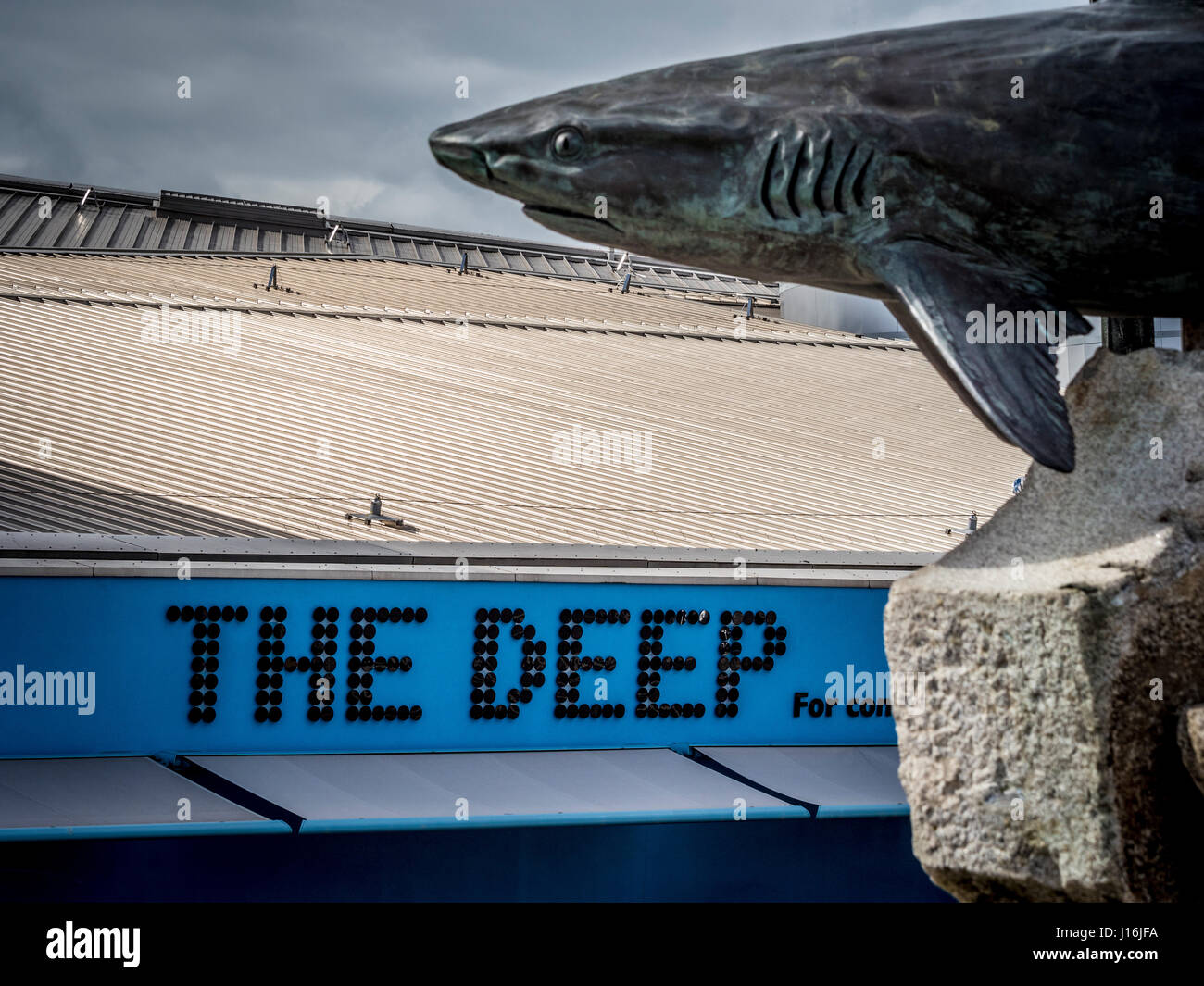 The Deep sign and shark sculpture, Visitor attraction, Hull, UK. - Stock Image