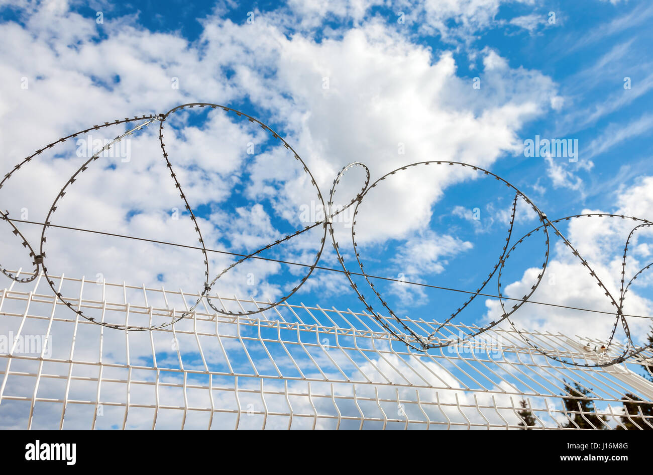 Barbed wire against the blue sky background. Protective fencing specially protected object of barbed wire - Stock Image