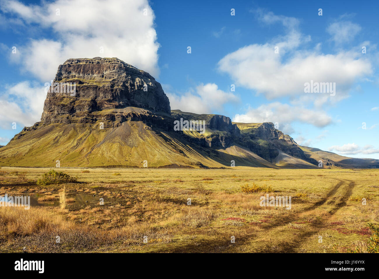 Scenic landscape with field winding car tracks in Iceland - Stock Image