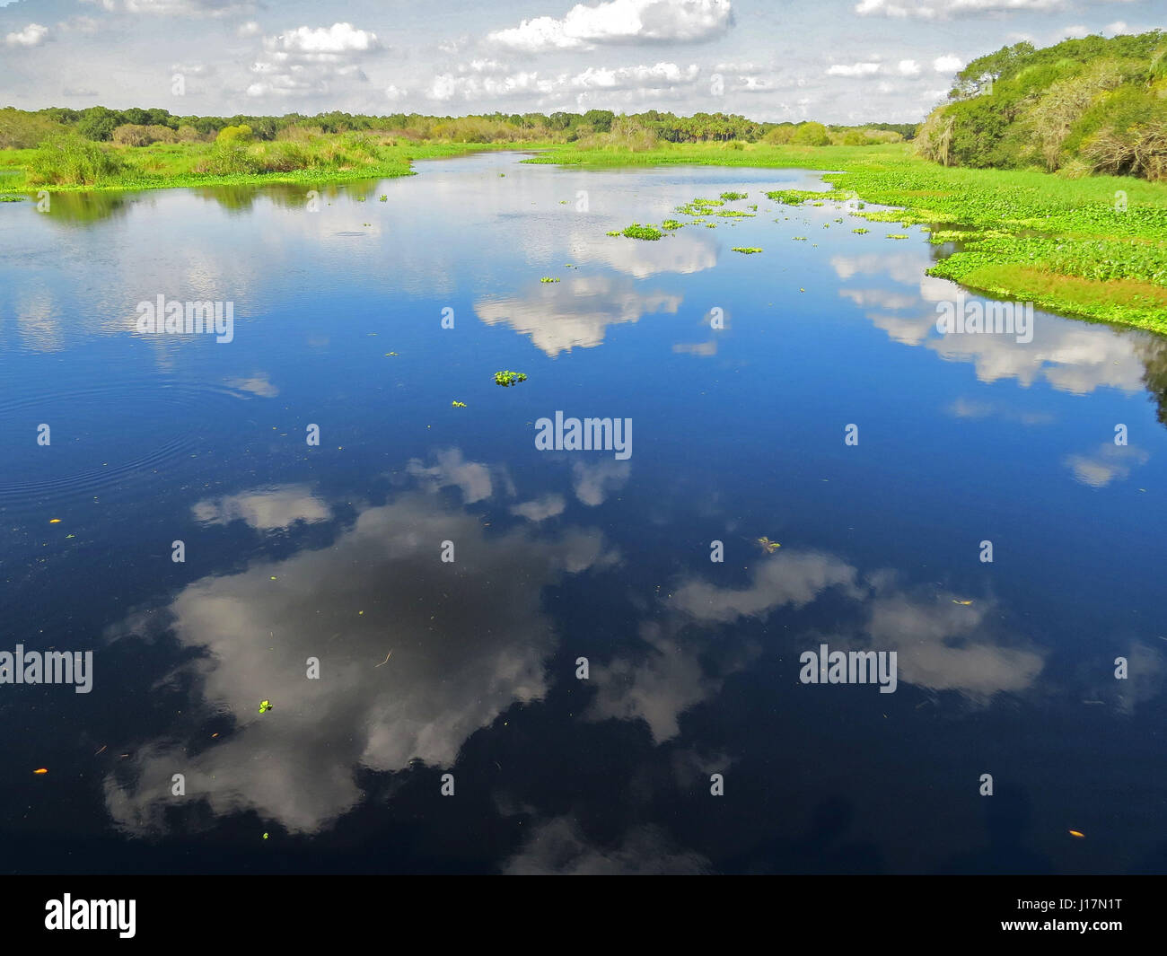 Water reflections of the sky and clouds at Myakka River State Park, Florida - Stock Image